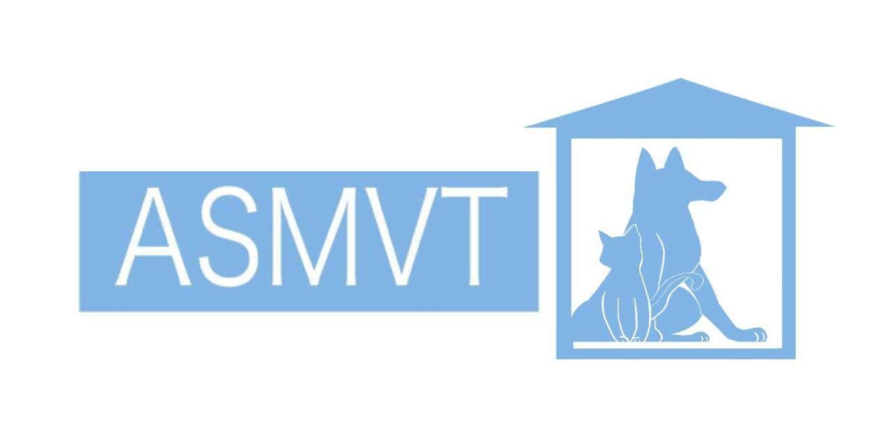 ASMVT logo
